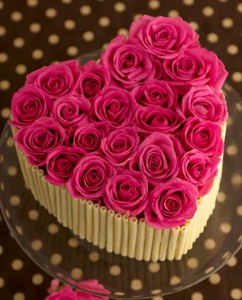 Pink rose chocolate curl birthday cake