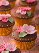 pink-blossom-and-chocolate-wedding-cupcakes